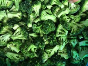 Frozen Broccoli with (3-5cm) Cut pictures & photos