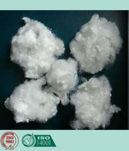 Recycled Polyester Staple Fiber (Hollow, Conjugated, Non-Siliconized) (7D/15D HCNS) pictures & photos