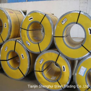 Galvanized Steel with Prepainted Coils (Tdx51d) pictures & photos