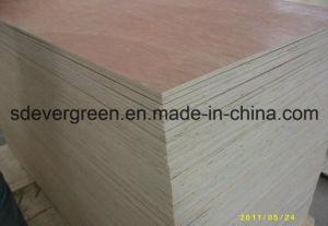 Hot Sales Marine Plywood