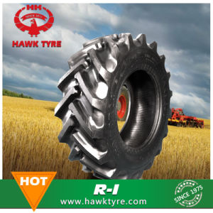 12-16.5 Bobcat Tyre, Skid Steer Tyre pictures & photos