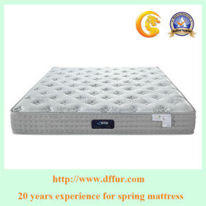 Comfortable Sponge Pillow Top Round Mattress pictures & photos