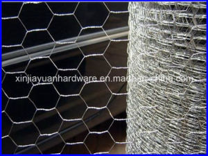 Galvanized Hexagonal Wire Netting for Pourltry Netting pictures & photos