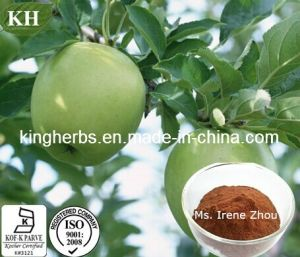 Kingherbs′ 100% Natural Apple Extract: Polyphenols 50%- 80%; pictures & photos