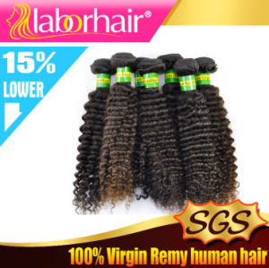 "7A 22"" Kinky Curl 100% Brazilian Virgin Remy Human Hair Extensions pictures & photos"