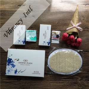 High Quality Hotel Supplies Set/ Hotel Amenities pictures & photos