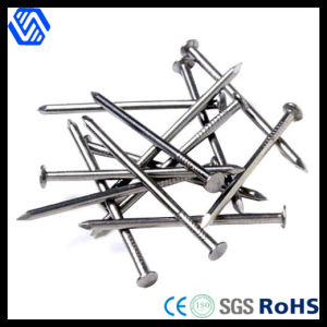 Wholesale Wire Manufacturer Galvanized Concrete Nails pictures & photos