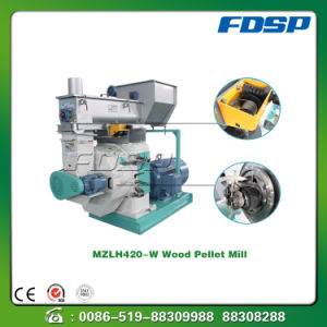 Bio-Energy Wood Pellet Mill From China Manufacturer pictures & photos