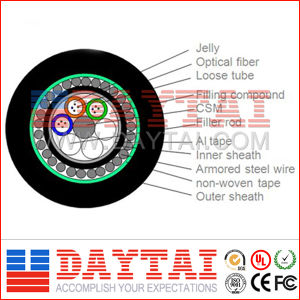 Underwater Steel Armored GYTA33 (G652D) Fiber Optic Cable pictures & photos