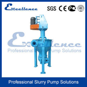 Centrifugal Froth Slurry Pump Design (EVF-2Q) pictures & photos