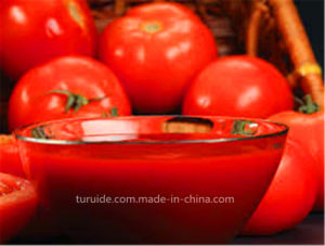 100% Purity Aseptic Bag Tomato Paste with Iron Drum