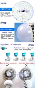 CE RoHS Passed B22 LED Bulb for Home Decoration