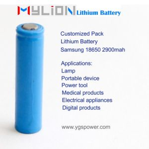 Hight Quality Lithium Battery for Portable X Ray System etc. 7.4V2.9ah