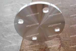 JIS Standard Stainless Steel Flange Blind Flange pictures & photos