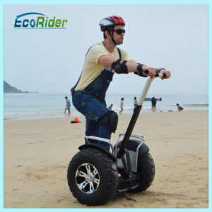 Xinli Escooter New Products Electric Cart, Electric Unicycle pictures & photos