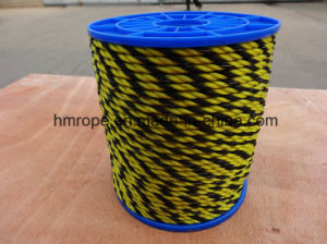 PE Plastic Rope Colored Used Outside Good Quality pictures & photos