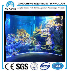 Large Aquarium Decorations/Large Acrylic Aquarium/Large Acrylic Fish Tank/Huge Aquarium pictures & photos
