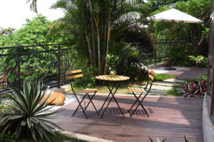 Outdoor Garden Furniture Iron Dining Set (BZ-DS006)