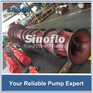 Line Shaft Overhung Vertical Turbine Spindle Dewatering Pump pictures & photos