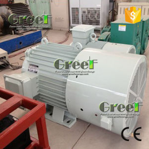 Synchronous Permanent Magnet Generator 20kw 250rpm with Stainless Steel pictures & photos