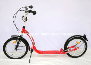 "16"" Steel Frame Foot Scooter (PB1616N) pictures & photos"