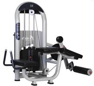 Fitness Equipment Horizontal Leg Curl Xc17 pictures & photos