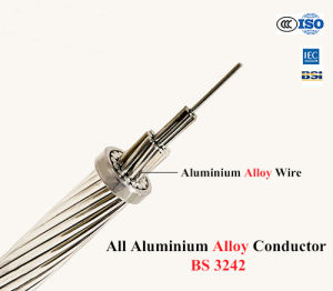 10mm2 Aluminum Stranded AAAC Bare Conductor for Overhead Use pictures & photos