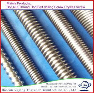 Thread Rod 3mts Length pictures & photos