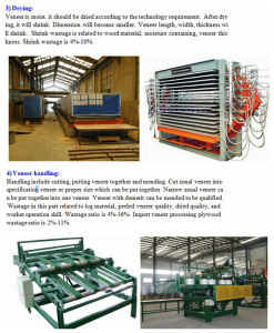 Full Automatic Plywood Production Line pictures & photos