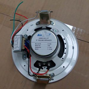 Ceiling Speaker 5inch PA System Coaxial Speaker (R163-5T) pictures & photos