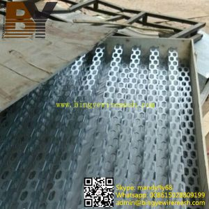 Building Material Metal Mesh Perforated Sheet pictures & photos