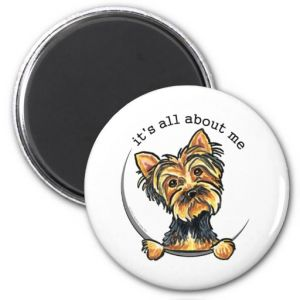 Latest Funny Yorkie Fridge Magnets pictures & photos