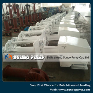 Industry Submersible Slurry Pump with Agitator pictures & photos