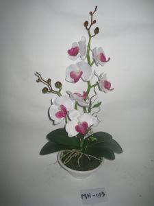 2012 New Design Hot Two Stems Artificial Orchid with White Plat Pot Mh-013