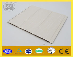 Sale PVC Panel for Ceiling and Wall Decoration 2014 Hot pictures & photos
