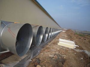 Cone Fan for Poultry (OFS) pictures & photos