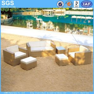 Outdoor Furniture Garden Furniture Rattan Sofa pictures & photos