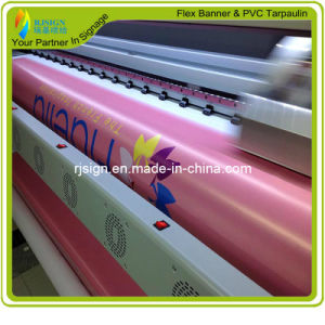 Factory Price High Quality PVC Backlit Flex Banner (RJLB004) pictures & photos