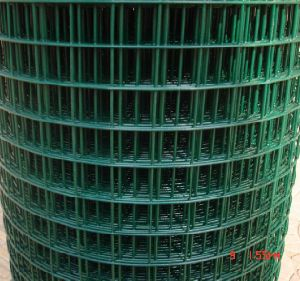 PVC Coated in Green Welded Wire Mesh pictures & photos