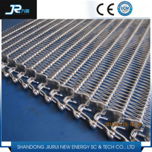 Chain Type Stainless Steel Mesh Belt pictures & photos