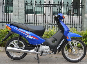Bsxmoto Bsx125-B1 Excellent and Cheapest Motorcycles Brazil Cubs Bikes China Manufacturer for OEM New Designed for 2016