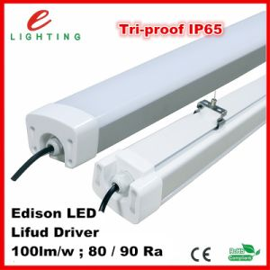 Ce RoHS 600mm 900mm 1200mm 1500mm Industrial IP68 IP65 LED Tri-Proof Light