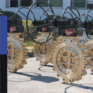 Gear Operation Wafer/Lug/Flanged High Performance Butterfly Valve pictures & photos