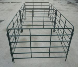Galvanized&Powder Coated 12foot Long Cattle Corral Panel/Used Livestock Panel pictures & photos