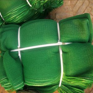 HDPE Scaffolding Debris Mesh Safety Net pictures & photos