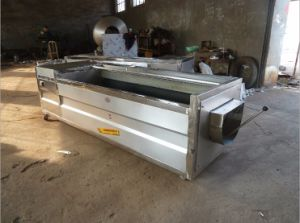High Efficiency and High Capacity Brush Type Potato Washing and Peeling Machine pictures & photos