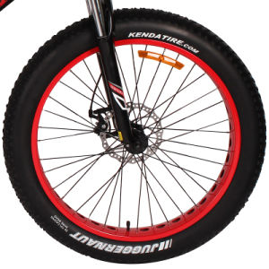 Chinese Fat Tire Hummer Mountain Bike with High Performance Battery pictures & photos