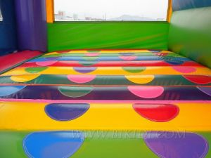 Inflatable 4 in 1 Combo Bouncer (B3059) pictures & photos
