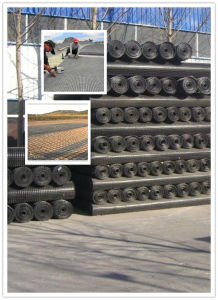 Manufacturer Biaxial Plastic Protect-Support PP Pet Geogrid for Road pictures & photos