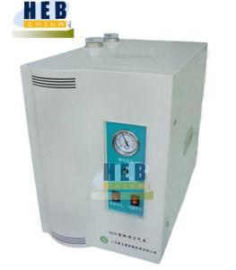 Hydrogen Generator (SHC-300) pictures & photos